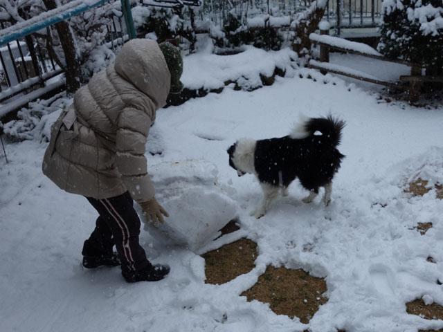 雪ダルマを作ろう