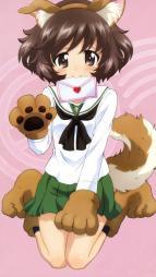 5yande.re 252587 akiyama_yukari animal_ears girls_und_panzer seifuku tail yamaguchi_asuka