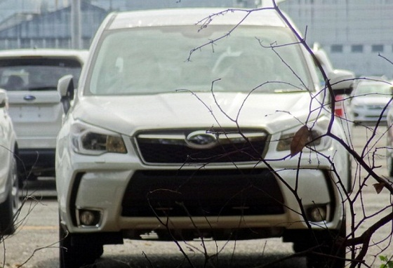 006-2014-subaru-forester-spy-shots.jpg