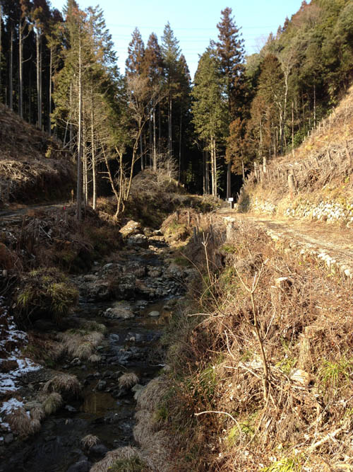 hukasawa014.jpg