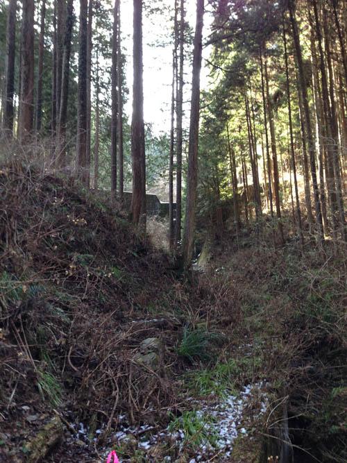 hukasawa016.jpg