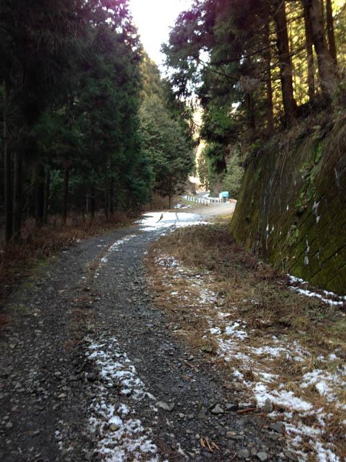hukasawa025.jpg