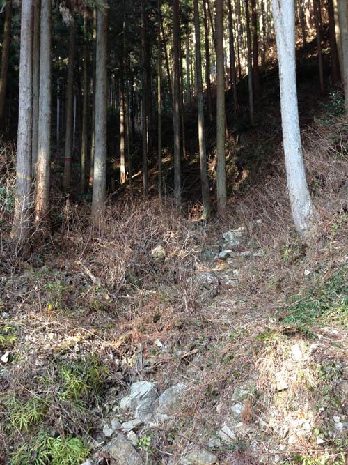 hukasawa038.jpg