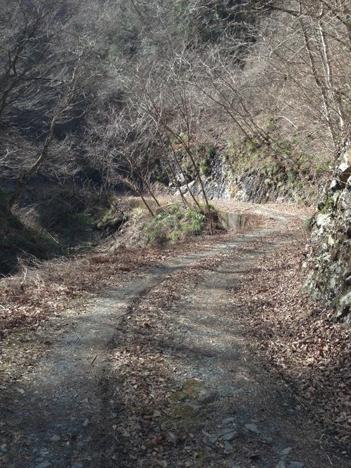 kumakura018.jpg