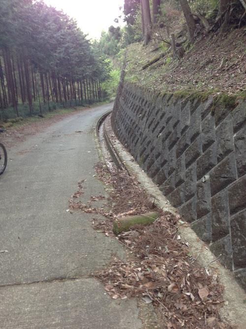 nanakubo08.jpg