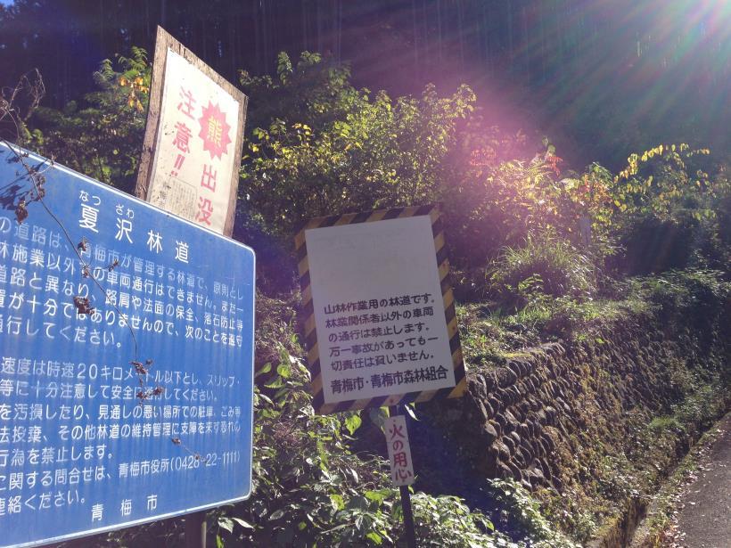 natsuzawa04.jpg