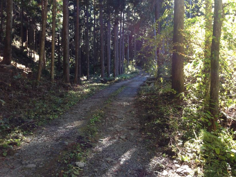 natsuzawa14.jpg