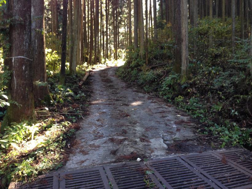 natsuzawa29.jpg