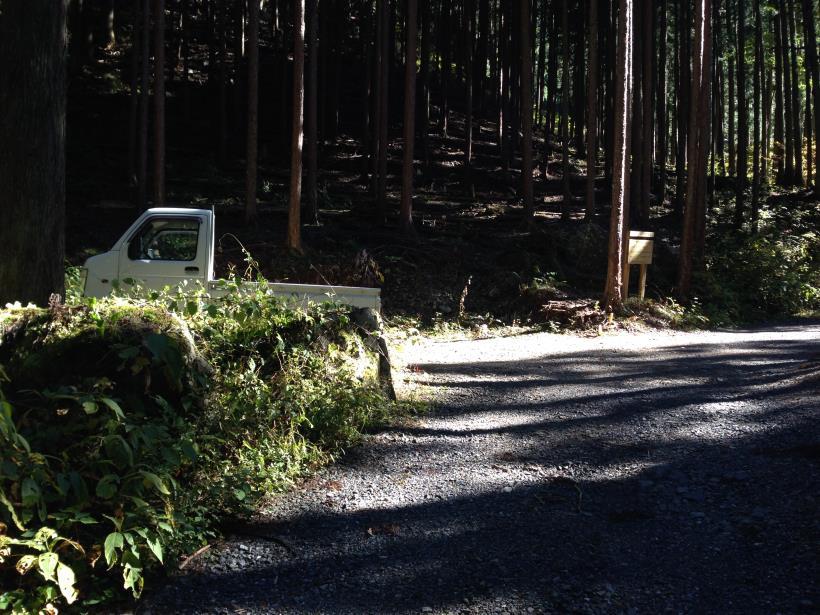 natsuzawa32.jpg