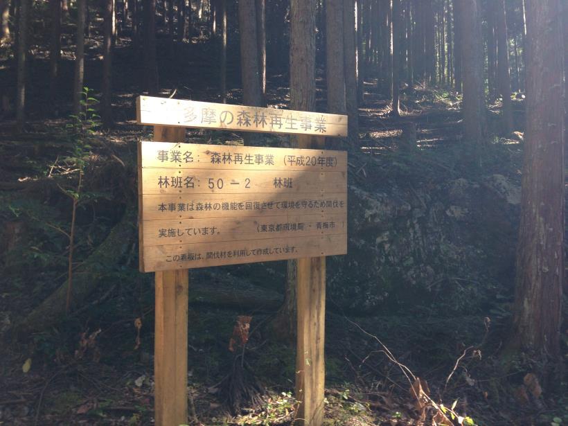 natsuzawa33.jpg