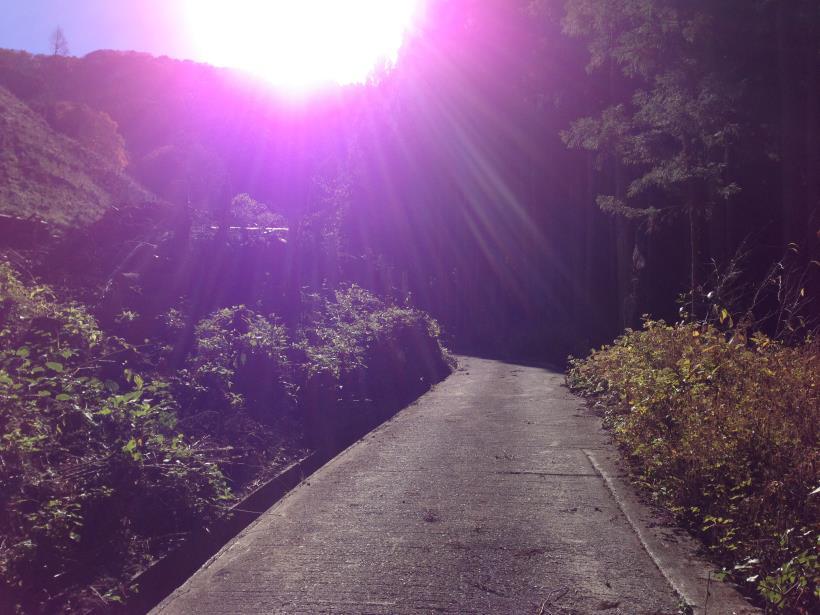 natsuzawa36.jpg
