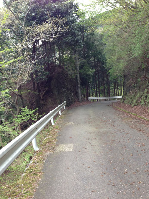 ninoashi22.jpg