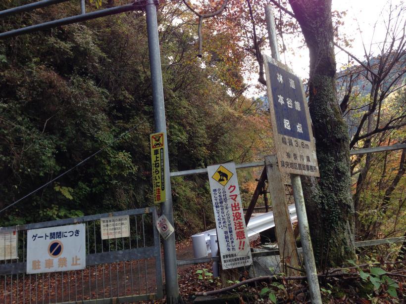 siomizu02_201411212045319b3.jpg