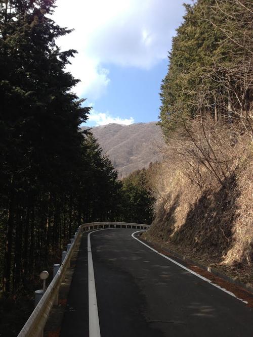 tanagashira001.jpg