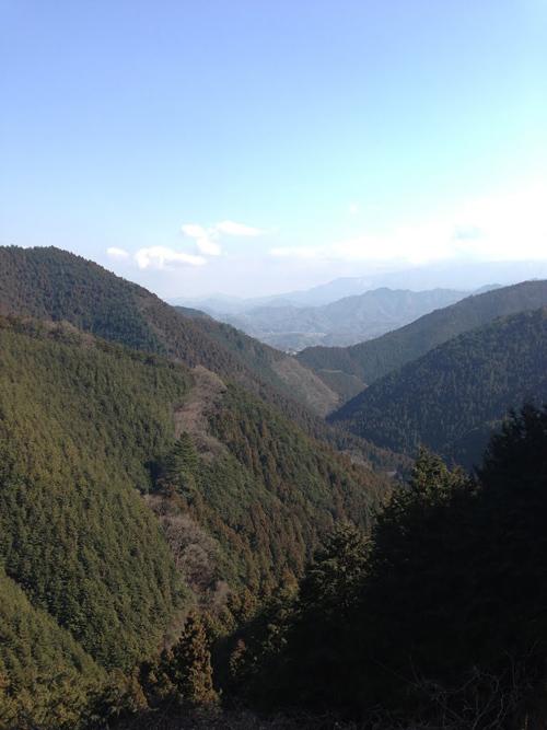 tanagashira012.jpg