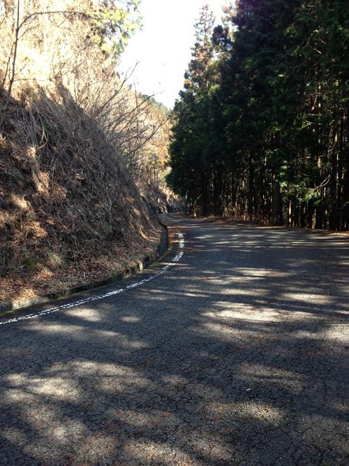 tanagashira018.jpg