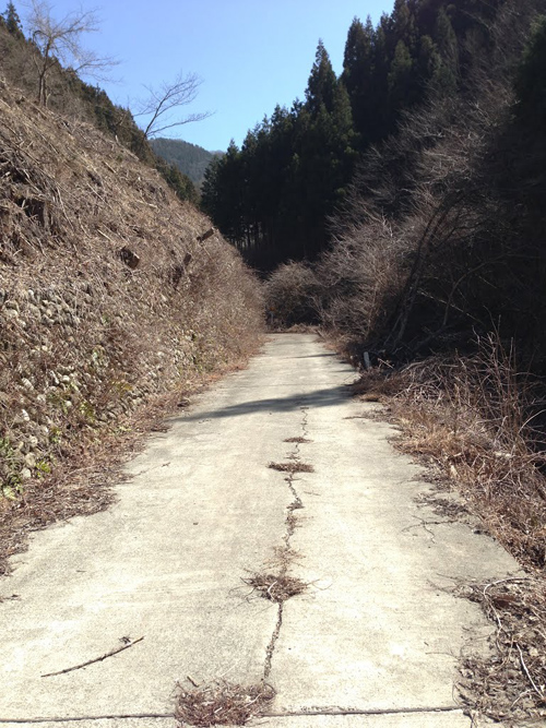 yazawarin026.jpg