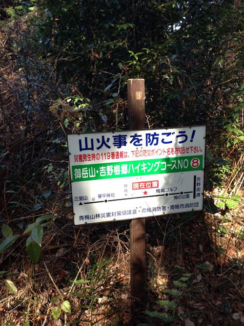 yoshinoume014.jpg