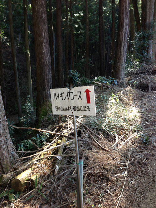 yoshinoume031.jpg