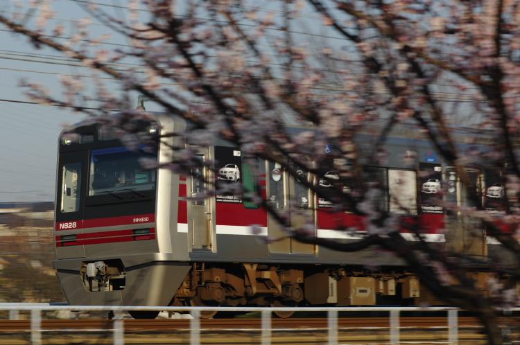 2013年03月09日 京成 300