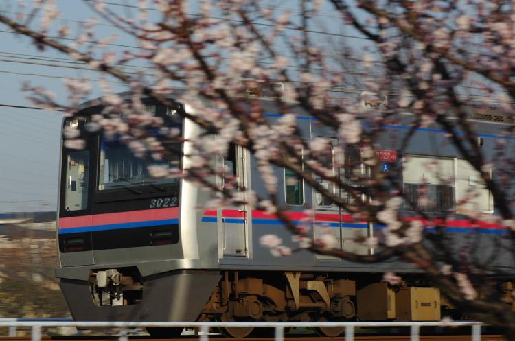 2013年03月09日 京成 311