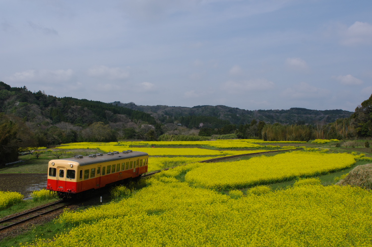 2013年04月01日 小湊鉄道 026