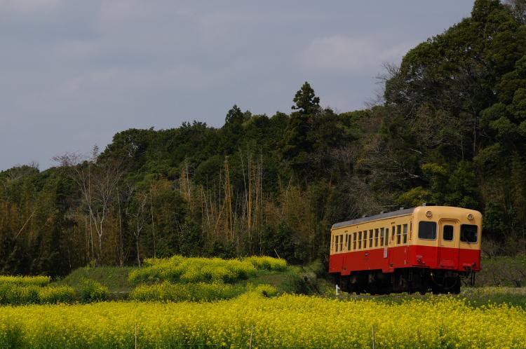 2013年04月01日 小湊鉄道 036