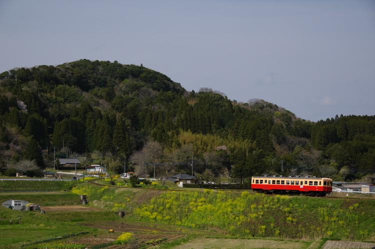2013年04月01日 小湊鉄道 039