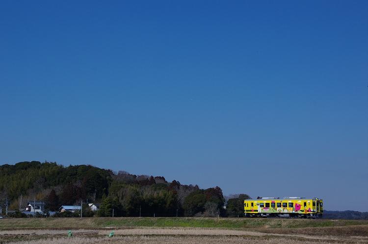 2013年02月8,10日 京王 いすみ 022