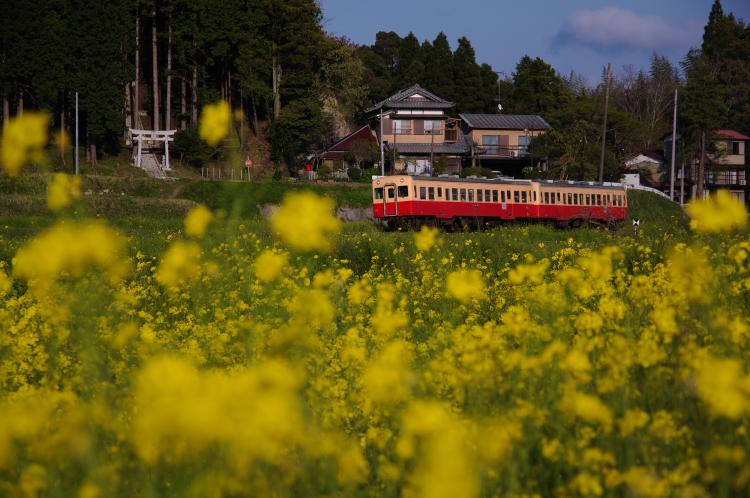 2013年04月13日 小湊鉄道 035