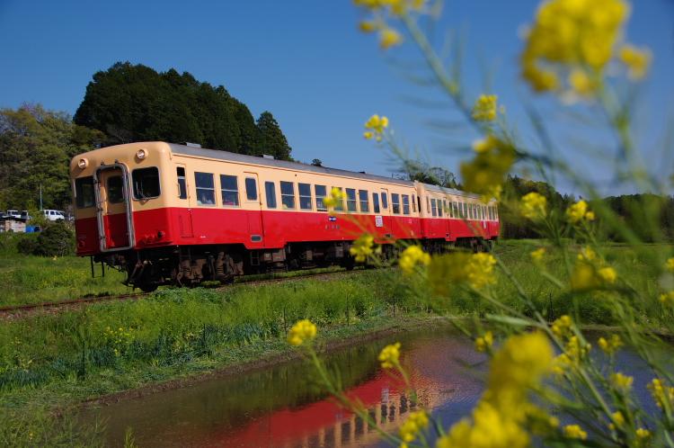 2013年04月13日 小湊鉄道 027