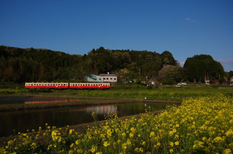 2013年04月13日 小湊鉄道 036