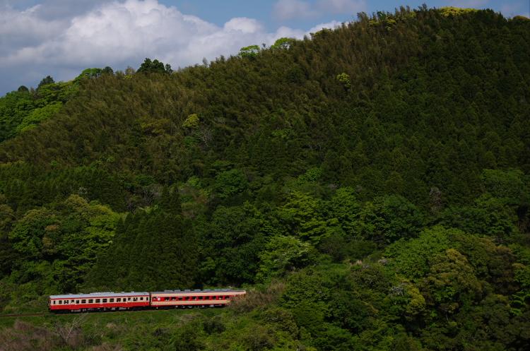 2013年05月04日 いすみ鉄道 021