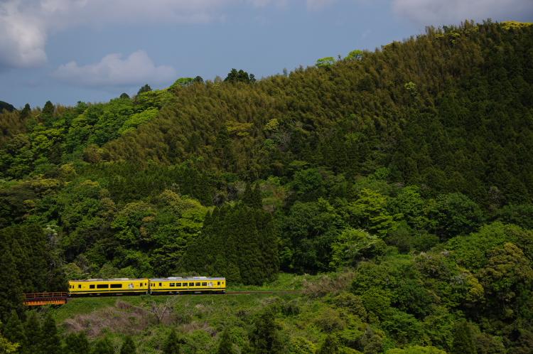 2013年05月04日 いすみ鉄道 041