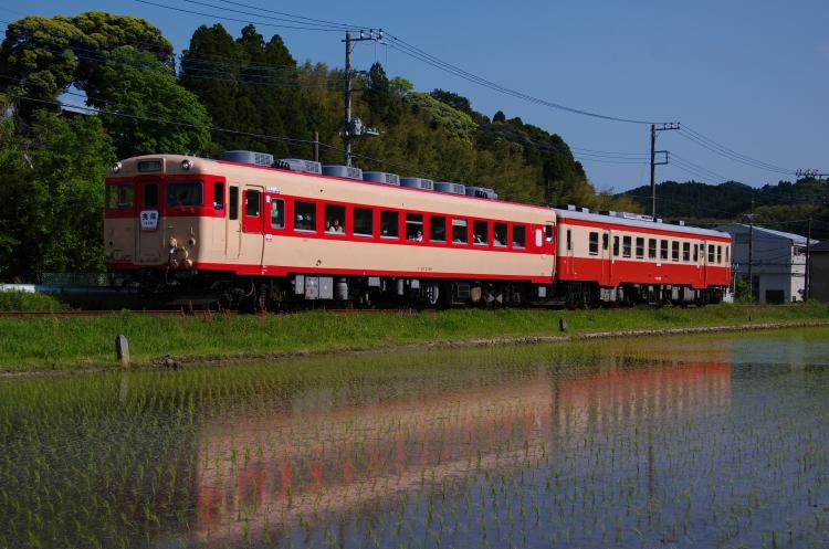 2013年05月04日 いすみ鉄道 023(2)