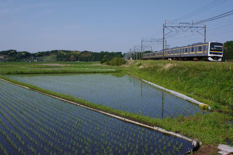 2013年05月13日 ケヨ入 モノサク 019