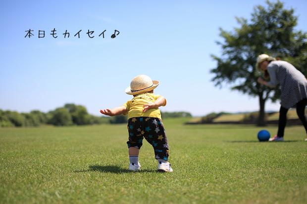z-IMG_3735.jpg