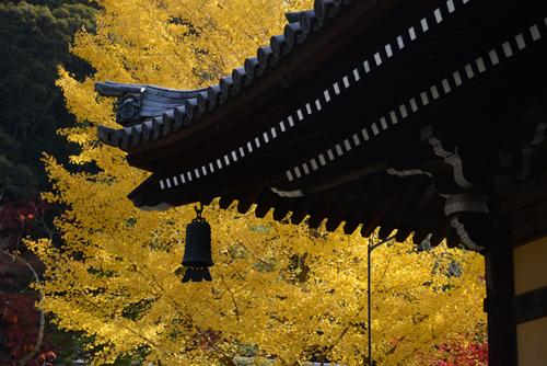 2012.11.京都 600_6627