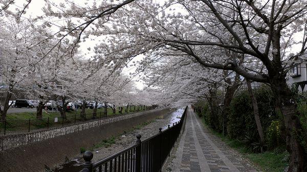 udagawaIMAG0150.jpg