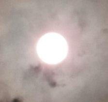 見えないけど金星日面通過中