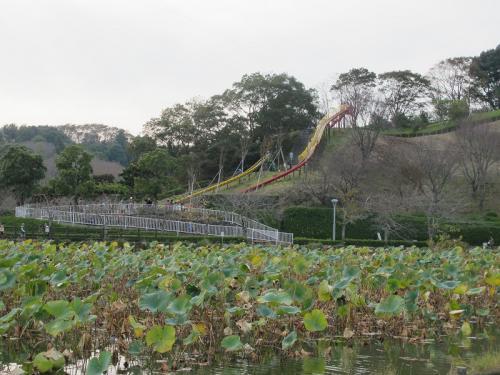 蓮華寺池公園 すべり台