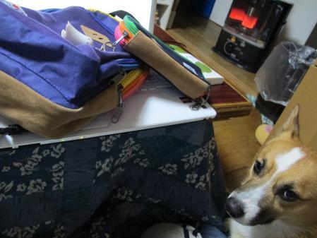 アーサーとバッグ