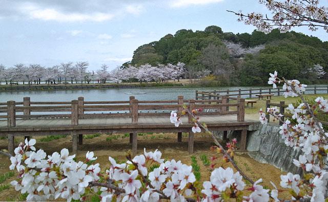 鶴亀公園1