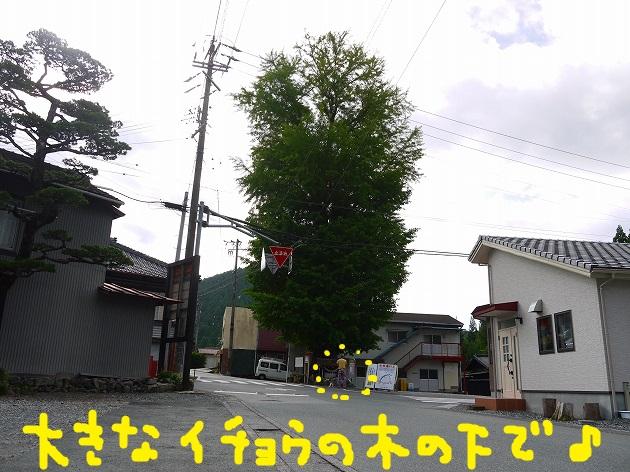 P1510177.jpg