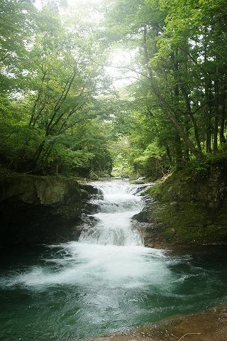 伏伸の滝DSC03458