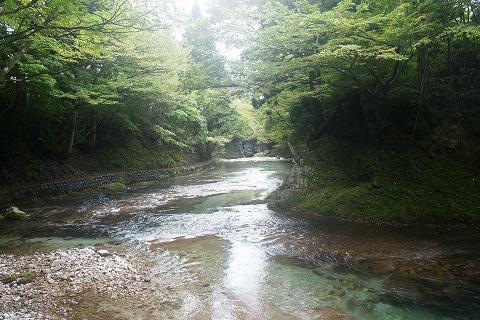 伏伸の滝DSC03459
