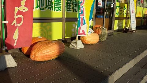 かぼちゃ_161600
