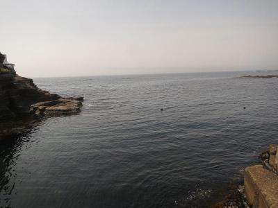 05-15 今日の海