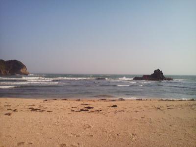 03-19 今日の海