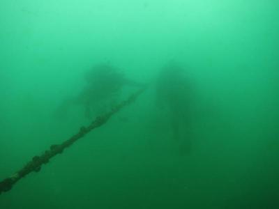 04-19 シルエットのダイバー